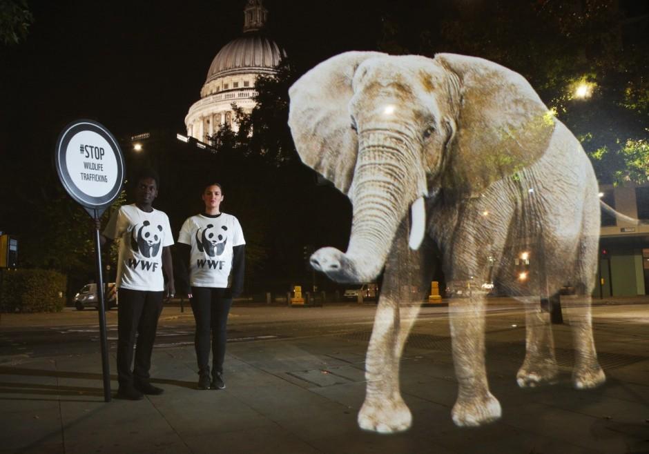 s3-elephant_0--default--940